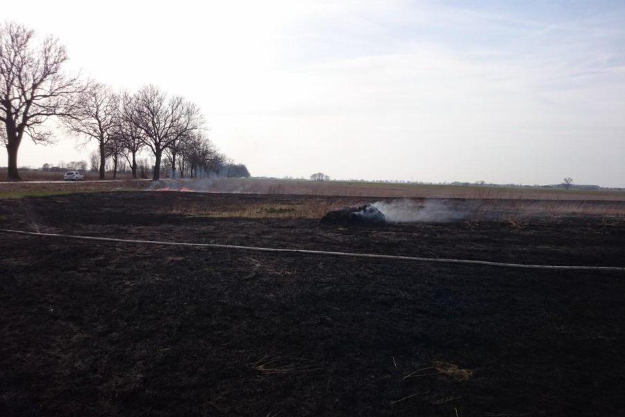 Pożar trawy – Napachanie